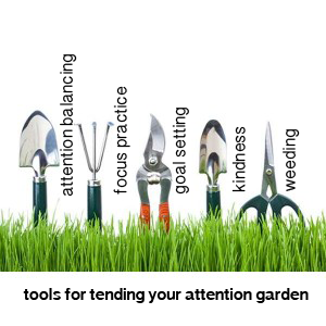 AttentionGarden Tools